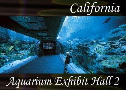 SoundScenes - Atmo-California - Aquarium Exhibit Hall 2