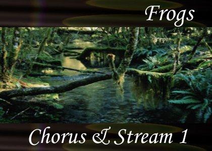 Chorus and Stream 1