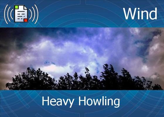 Heavy Howling